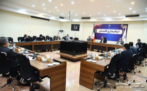 تسریع در صدور شناسنامه های واجدین شرایط طرح تحصیل تابعیت